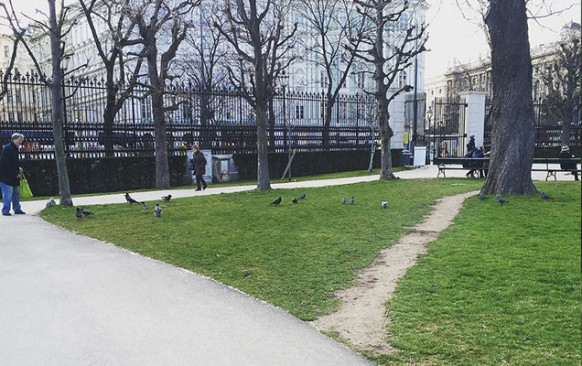 Desire line in a park - Brandculture